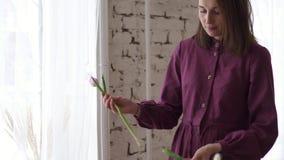 女性卖花人的手修剪与薄纱茎 影视素材