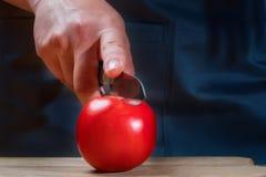 女性厨师切与一把刀子的一个红色蕃茄在木切板 免版税库存图片
