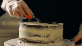 女性厨师在蛋糕工作,站立在桌上在餐馆厨房里  股票视频