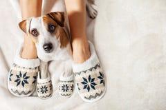 女性和狗在拖鞋 免版税库存照片
