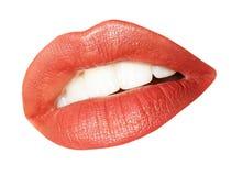 女性嘴唇 库存图片