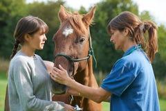 女性在领域的狩医审查的马与所有者 免版税库存照片