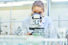 女性实验室显微镜科学家使用 免版税库存照片