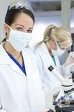 女性实验室显微镜科学家 库存图片