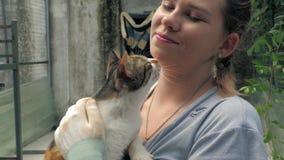 女性志愿举行特写镜头手猫的在避难所 r 股票视频