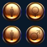 女性性别图标男性装箱 向量例证