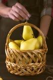 女性手拿着一个篮子用梨 免版税库存图片