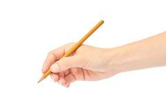 女性手拿着一支铅笔 背景查出的白色 库存图片