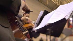 女性手背面图在弹小提琴和观看入笔记的外形的 股票视频