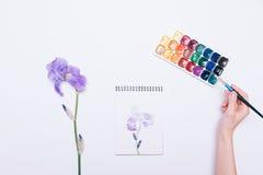 女性手画在一个笔记本的一朵蓝色花有水彩的 免版税库存照片