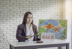 女性拍卖控制,对金鱼照片拍卖,白色砖背景的锤子敲 免版税库存图片