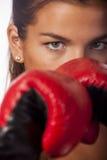 女性拳击手特写镜头 库存图片