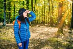 女性搜寻在森林里 免版税库存图片