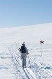 女性浏览滑雪者从后面 免版税库存照片