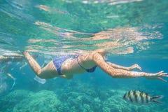 女性潜航在热带珊瑚海 免版税图库摄影