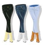 女性牛仔裤 向量 库存例证