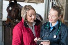 女性狩医审查的马在显示所有者数字式Tabl的槽枥 免版税库存图片