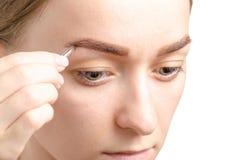 女性眼眉形状褐色眼睛眼眉镊子 免版税图库摄影