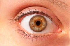 女性眼睛 免版税库存照片