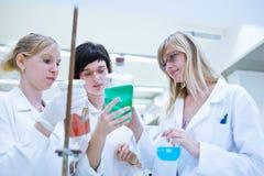 女性研究员在化学实验室 库存图片