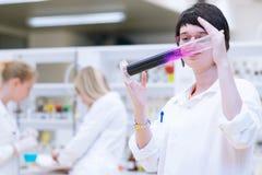女性研究员在化学实验室 库存照片