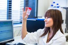 女性研究员执行的研究的画象对化学实验室 免版税图库摄影