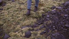女性脚特写镜头视图在起动的 走通过与青苔的沼泽的少妇,探索单独自然 股票视频