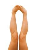 女性腿 库存照片