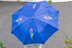 女性蓝色伞顶视图有郁金香的图片的 免版税库存图片