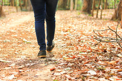 女性走在道路 免版税图库摄影