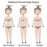 女性身体形状类型 顶面滴漏,在周围或卵形和直接 现实手拉的乱画样式剪影 向量 库存照片