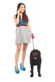 女性遛她的狗和谈话在电话 图库摄影