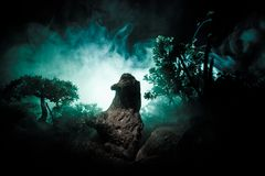 女性邪魔 邪魔来 恶魔或妖怪形象Slhouette在火背景的  恐怖视图 免版税库存图片