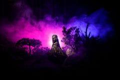 女性邪魔 邪魔来 恶魔或妖怪形象Slhouette在火背景的  恐怖视图 库存图片