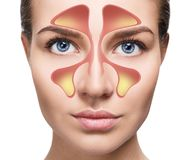 女性面孔显示与寒冷的鼻静脉窦在白色背景 图库摄影
