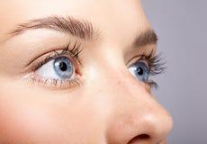 女性面孔特写镜头宏观画象  人的妇女开放蓝眼睛 免版税库存图片