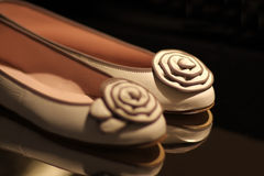 女性鞋子 免版税库存照片