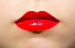 女性嘴唇绘了明亮的红色唇膏特写镜头 图库摄影