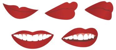 女性嘴唇 免版税库存照片
