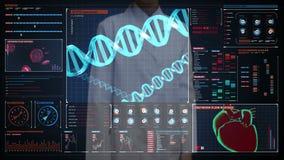 女性医生感人的数字式屏幕,血细胞 人的心血管系统,未来派医疗应用 相互数字式的用户 影视素材