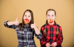 女朋友吃苹果快餐,当放松时 学校快餐概念 r 获得快乐的孩子乐趣 免版税库存照片