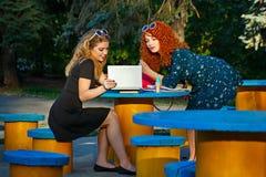 女朋友在有膝上型计算机的公园 免版税库存图片