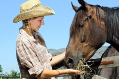 年轻女牛仔哺养的马 库存图片