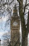女王伊丽莎白塔在议会议院的大本钟伦敦  免版税库存图片