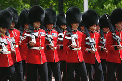 女王的生日游行的女王的战士 库存图片