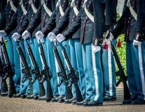 女王/王后卫兵,丹麦 图库摄影