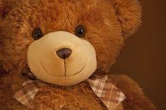 女用连杉衬裤熊巨大眼睛微笑 免版税库存照片