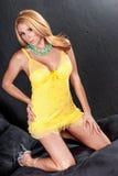 女用贴身内衣裤性感的妇女 图库摄影