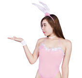 女用贴身内衣裤或兔宝宝女孩的性感的女孩 免版税库存图片