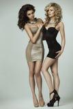 女用贴身内衣裤的两个秀丽夫人 免版税图库摄影